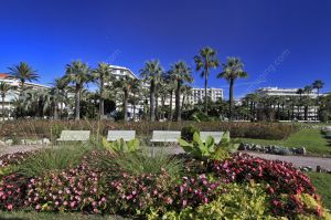 Cannes la Roseraie