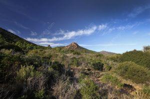 Esterel hill
